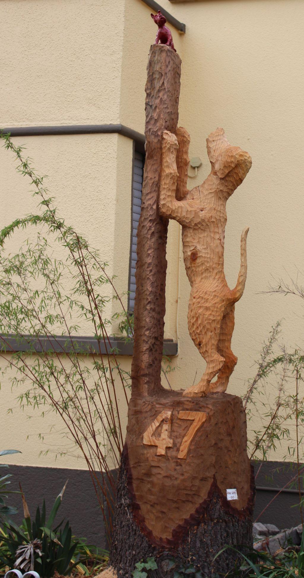 Karlsruhe, Hunds - gemein.Silbertanne 270 x 56 x 56 cm