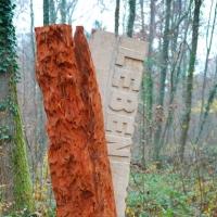 Pfad der Nachhaltigkeit - Totholz