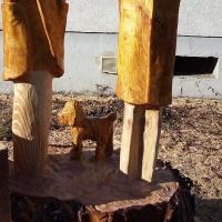reisende-kiefer-holzlasur-185-65cm
