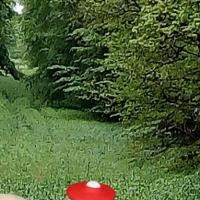 leergutannahmestelle-natur-kastanie-teilweise-bemalt-110-du-28-cm